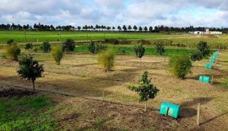 Escuela Agraria de Gregorio Aznárez recibirá equipo de riego por goteo donado por Israel