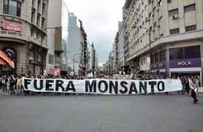 Maldonado se suma a movilización mundial el sábado 19 contra Monsanto-Bayer