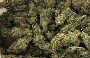 Un individuo de 28 años fue enviado 2 años a la cárcel por venta de drogas