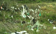 La Dinama insta a los pequeños comercios a incorporar las bolsas biodegradables