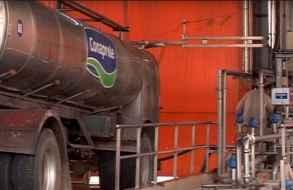 Planta que cierra Conaprole en San Carlos produce entre 80.000 y 90.000 litros de leche diarios