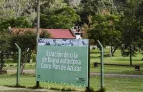 Gabinete del MEC y grupo multidisciplinario visita la Estación de Cría del cerro Pan de Azúcar