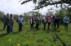 Se desarrolla programa para potenciar el turismo de avistamiento de aves en Maldonado