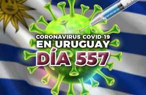 Se reportaron 188 casos nuevos de Covid-19 pero bajó nuevamente la cantidad de activos